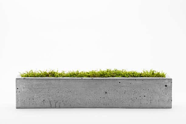 concrete planter with plants in